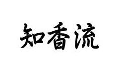 Chiko logo